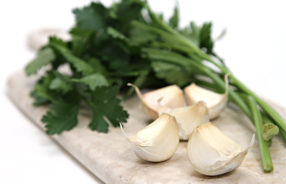 suga di compagna parsley and garlic