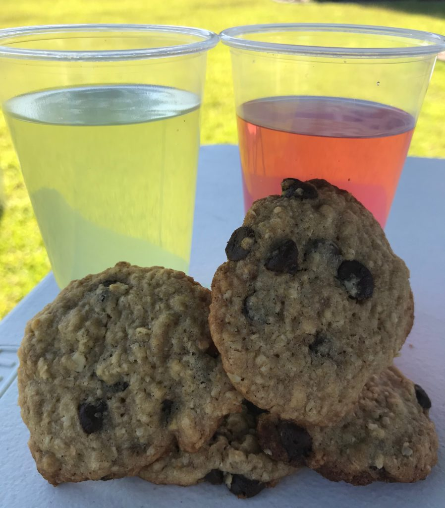 lemonade and cookie stand