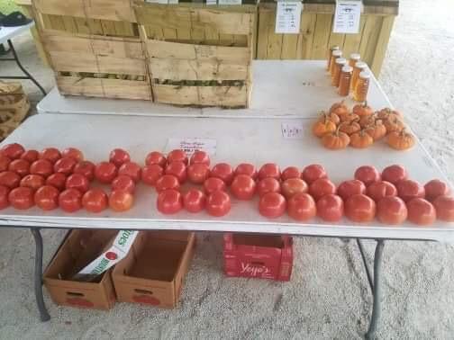 seaview crab company tomatoes